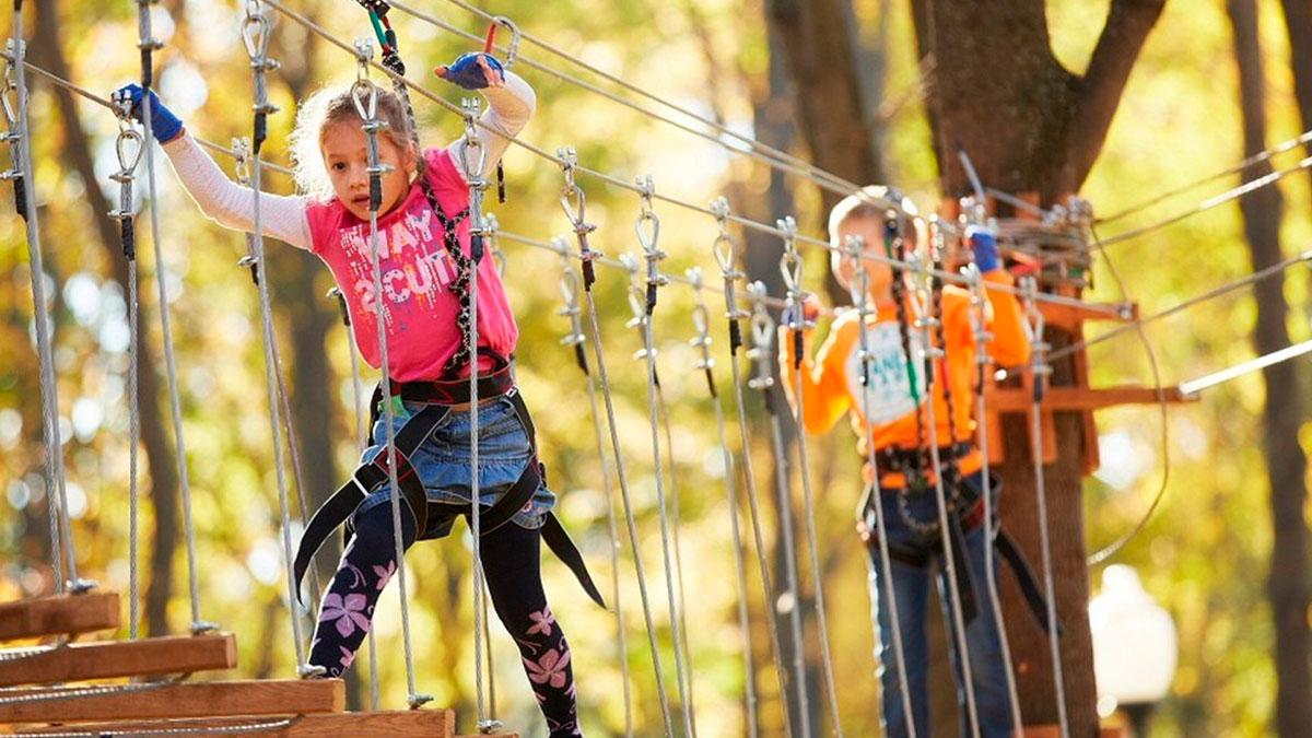 Веревочный парк детский. Московская область. Ногинский район